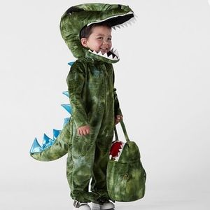 T Rex Costume WITH matching Treat Bag